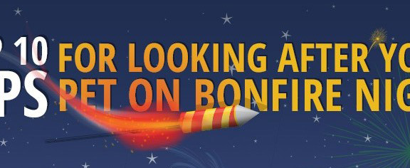 10-tips-bonfire-night-featured